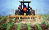 I Giovani Agricoltori chiedono tutele e certezze alla Regione Umbria